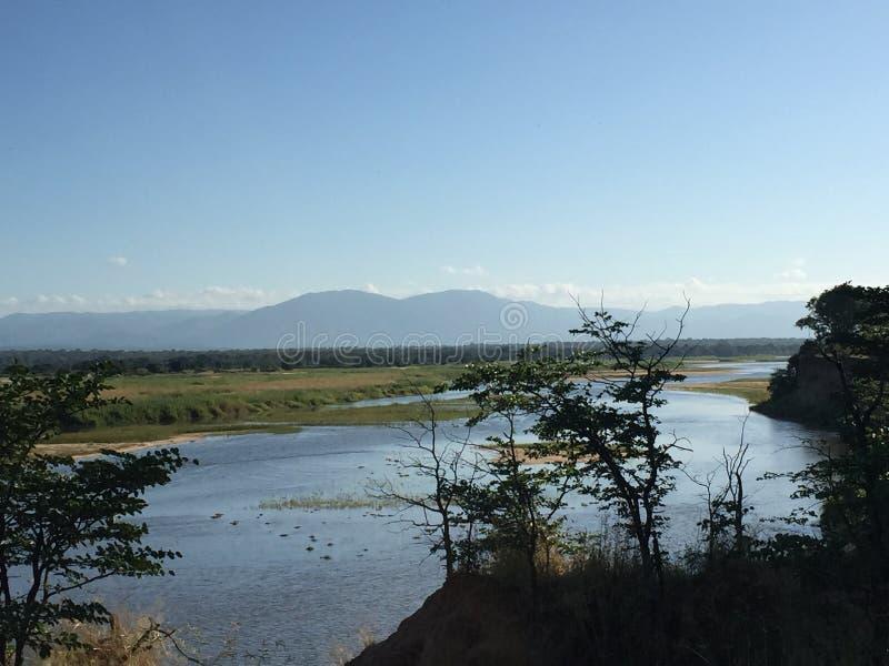Zambezi Rzeczny Chirindu Zimbabwe fotografia royalty free