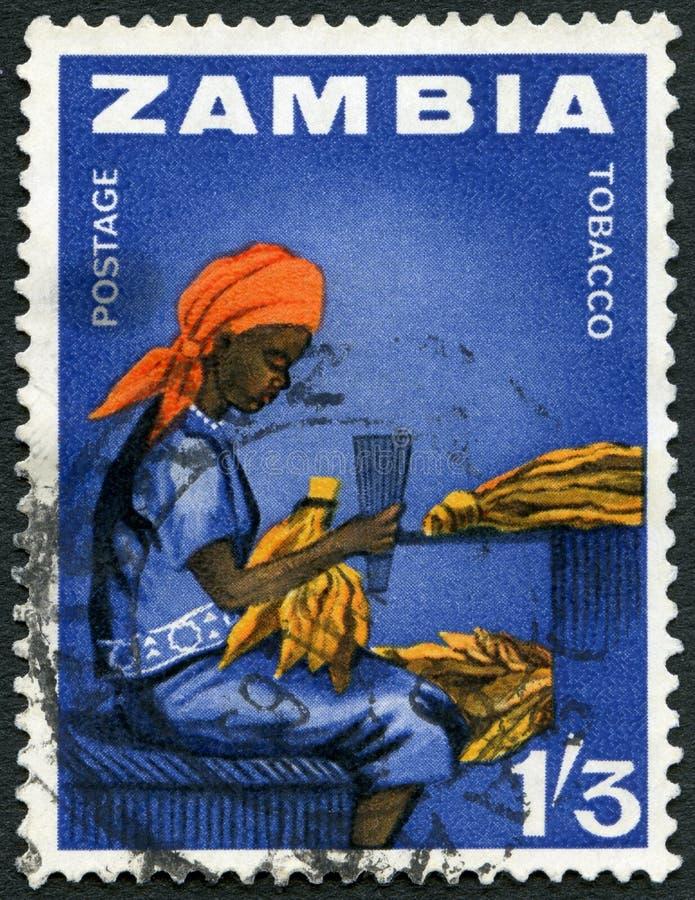 ZAMBIA - 1964: toont de arbeider van de Vrouwentabak, reeks van Zambia de onafhankelijkheids stock afbeelding