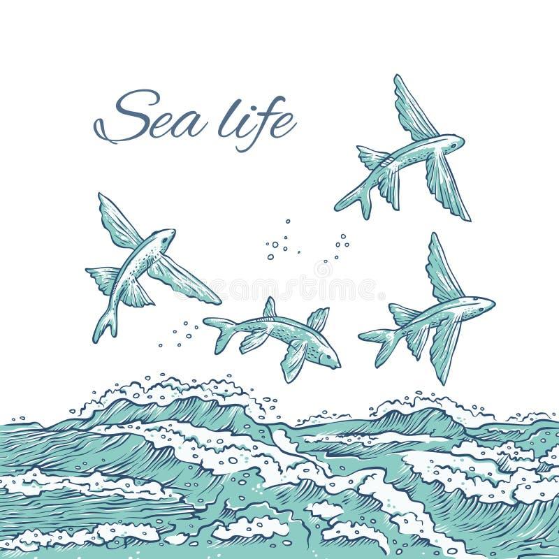 Zambullida de salto del pez volador del vector en ondas y espuma del mar Animales Ray-grises del océano del bosquejo monocromátic libre illustration