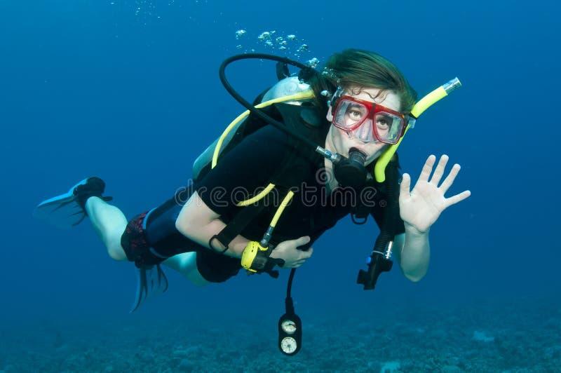 Zambullidor de equipo de submarinismo fotos de archivo