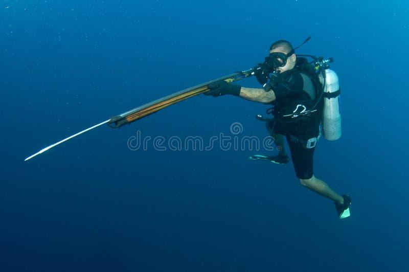 Zambullidor de equipo de submarinismo con el arma de arpón imagen de archivo libre de regalías