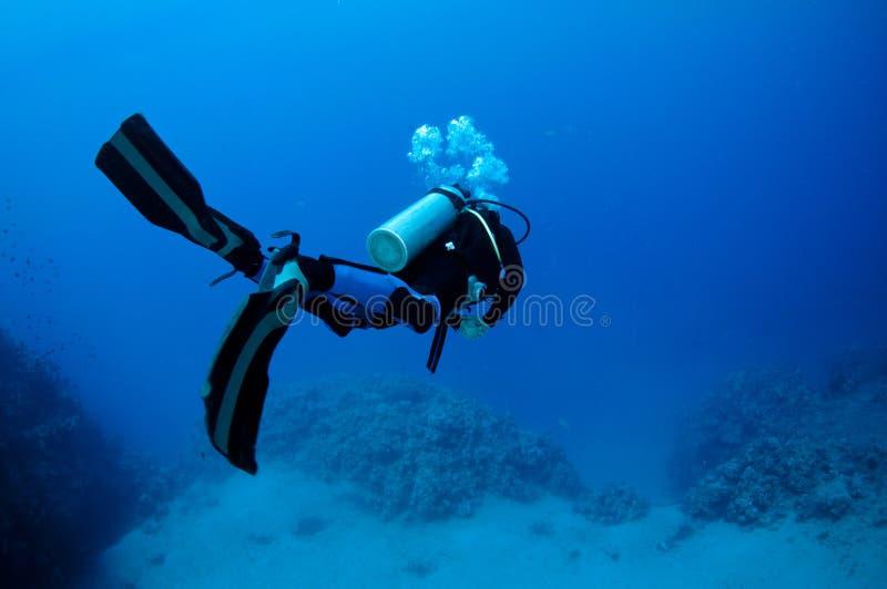 Zambullidor de equipo de submarinismo en el mar azul fotografía de archivo libre de regalías