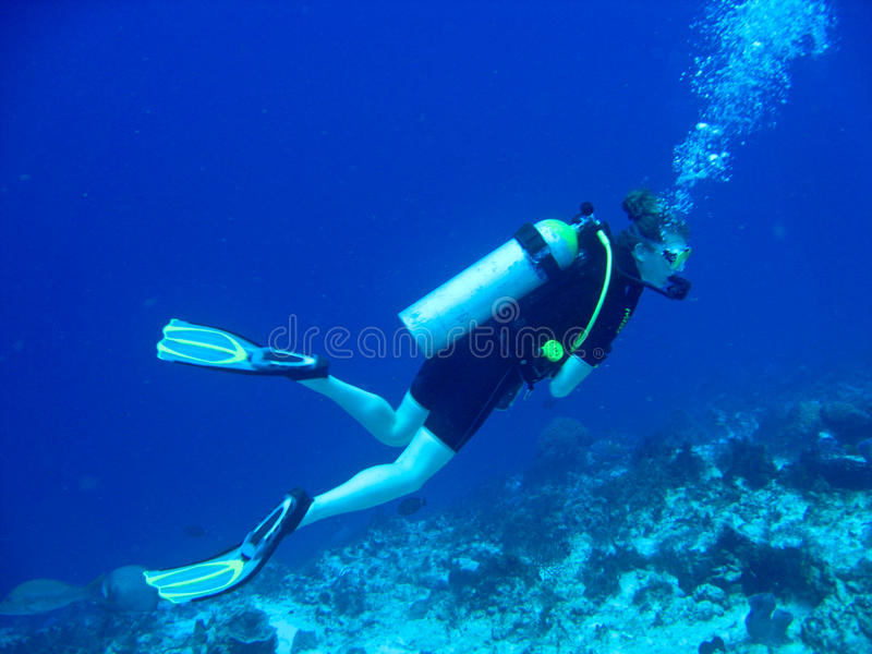 Zambullidor de equipo de submarinismo femenino fotos de archivo libres de regalías