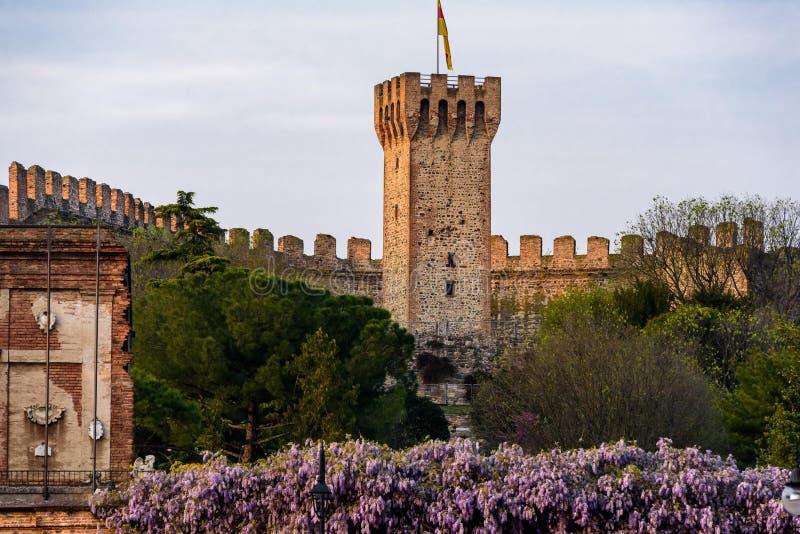 Zamek Carrarese w Este obrazy royalty free