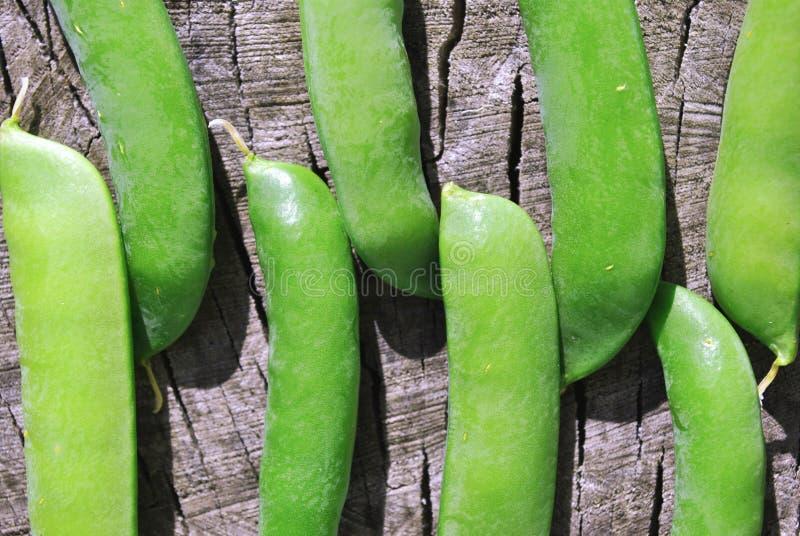 Zamknięci dojrzali zieleni strąki słodcy grochy, organicznie tekstura, rząd na starym drewnianym tle obraz royalty free