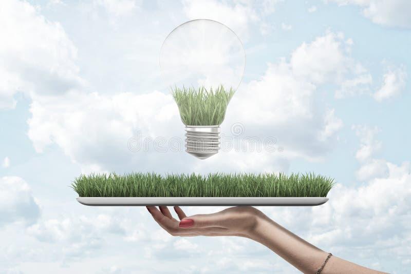 Zamknięcie boczne dłoni kobiety trzymającej cyfrowy tablet z zieloną trawą na ekranie i żarówką nad niebem zdjęcie royalty free