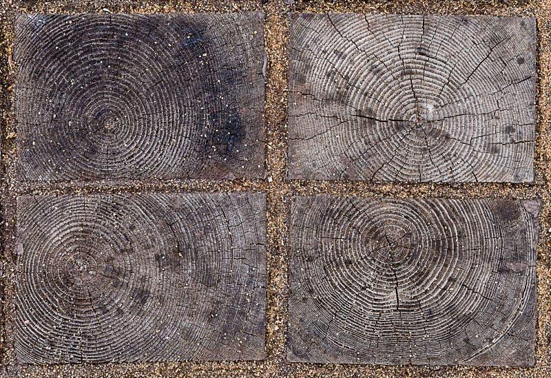 Zamkniętego elementu eco drewniana płytka z naturalnym wzorem piłujący drewno z rocznymi pierścionkami między blokami zdjęcie royalty free