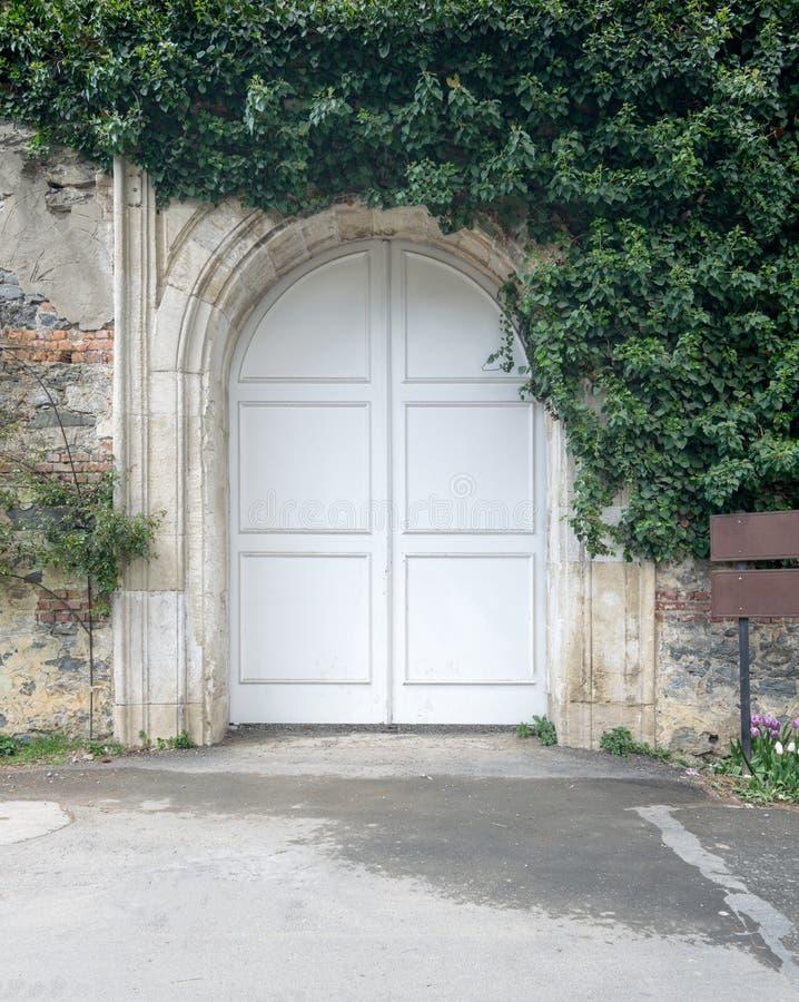Zamknięty łukowaty biały drewniany drzwi otaczający zielenią opuszcza na starego grunge kamiennej ścianie obrazy stock