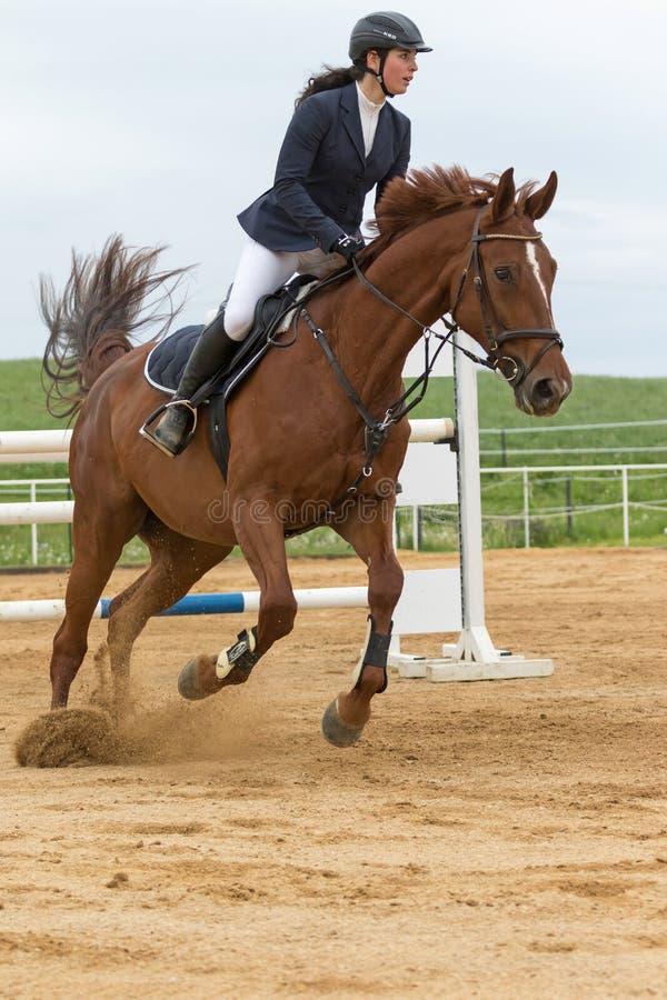 Zamknięty boczny widok horsewoman na brown koniu zdjęcie stock