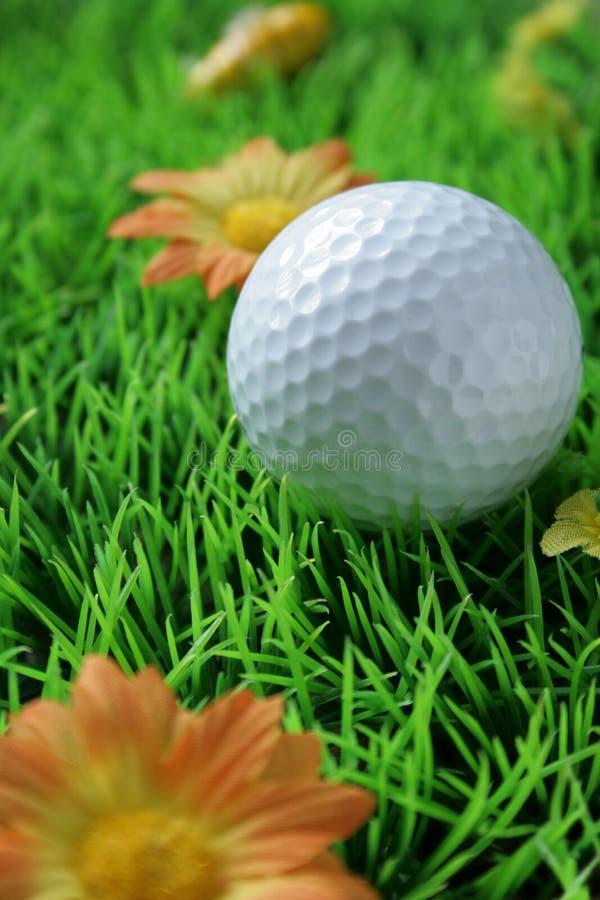zamknięty golfball sztuczna zamknięta trawa zdjęcie royalty free