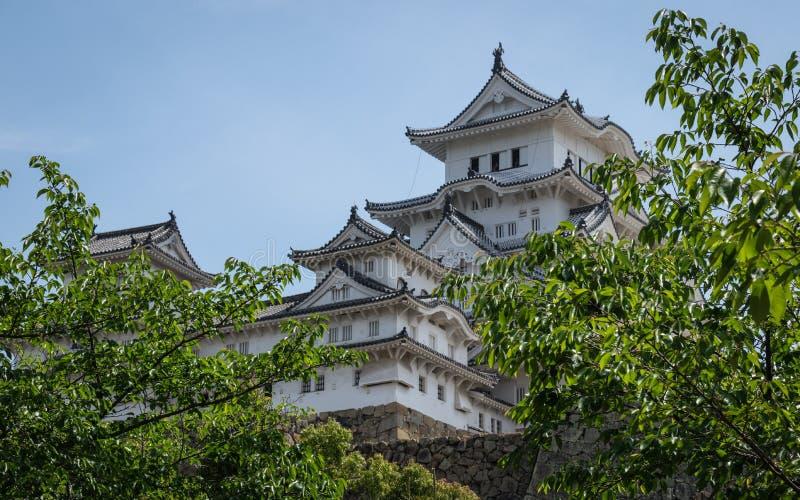 Zamknięty widok na Himeji kasztelu na jasnym, słoneczny dzień zakrywający zieloną roślinnością Himeji, Hyogo, Japonia, Azja fotografia royalty free