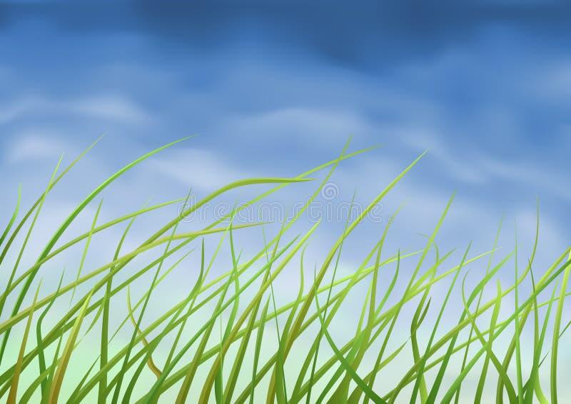 zamknięty zamknięta trawa ilustracji