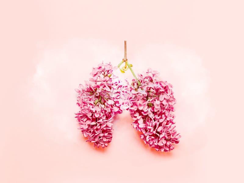 zamkni?ty krzywda fotografii dymienie zamkni?ty Medyczny pojęcie różowi bzów kwiaty kształtował w ludzkich płucach na różowym tle zdjęcie royalty free