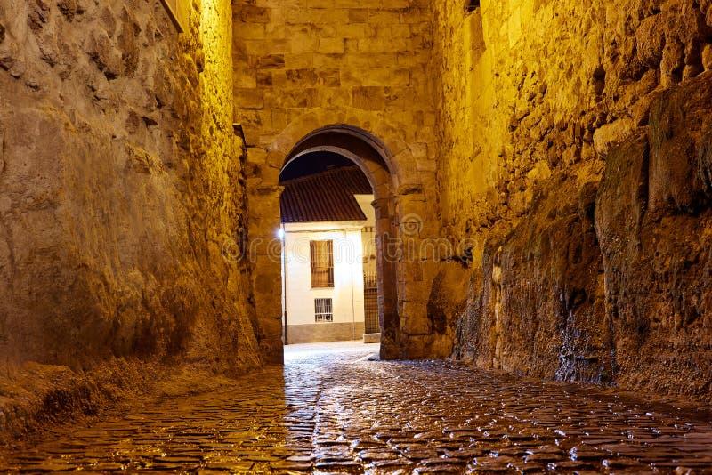 Zamora-Tür von Dona Urraca in Spanien lizenzfreies stockbild