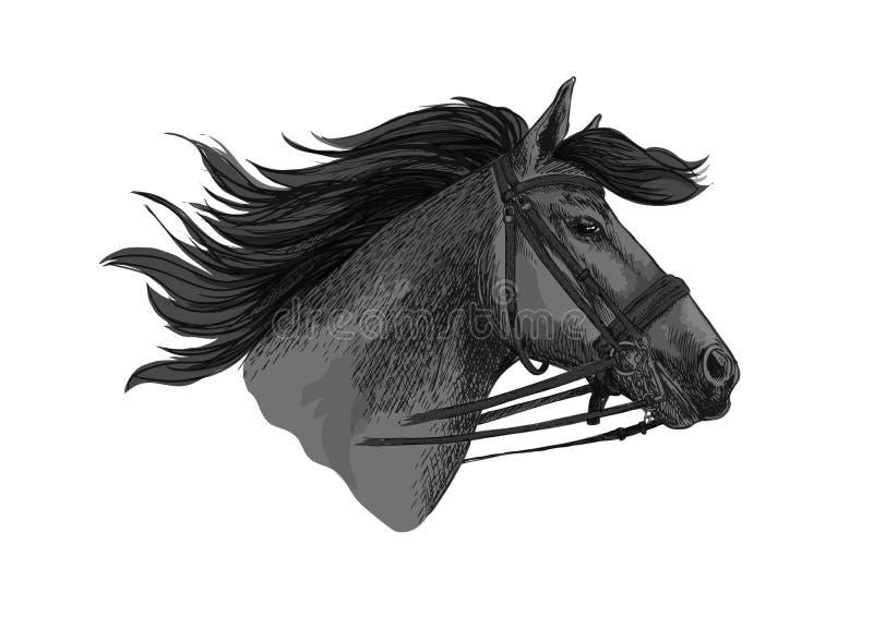 Zampone del cavallo nello schizzo di corsa di vettore della briglia illustrazione di stock