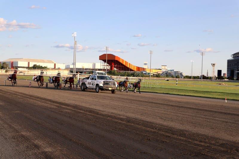 Zamponi della pista dei Meadowlands che allineano per correre immagine stock