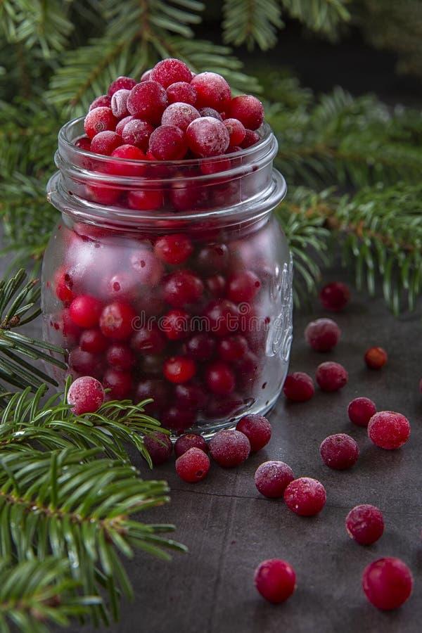 Zamrożone jagody żurawinowe w słoiku na stole zdobione gałęziami choinki Zima świąteczna zdjęcie royalty free