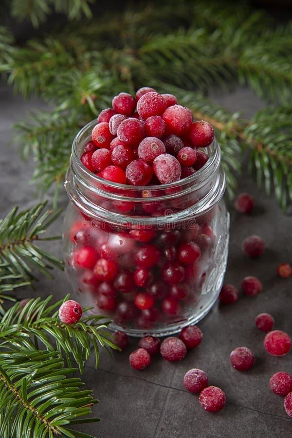Zamrożone jagody żurawinowe w słoiku na stole zdobione gałęziami choinki Zima świąteczna zdjęcia royalty free