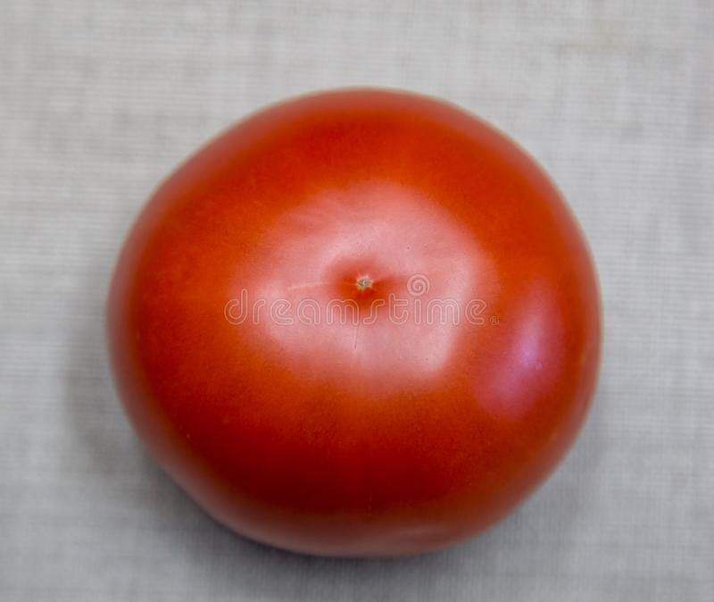 zamyka odosobniony jeden nad ścieżki czerwonym pomidorem w górę biel obrazy royalty free