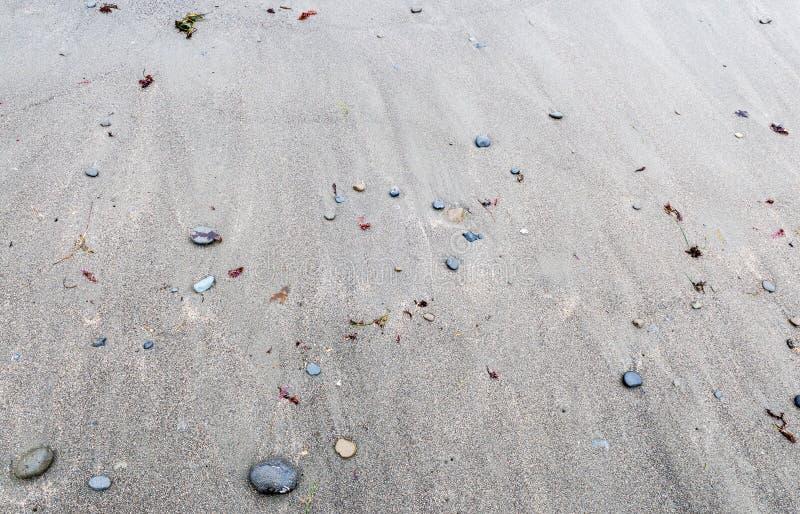Zamyka up czarna piasek plaża fotografia stock