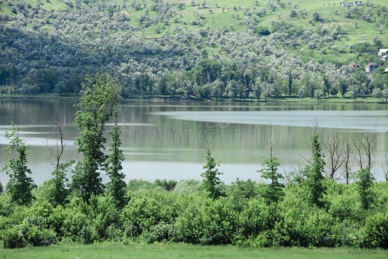 Zamyka up jesieni rzeka obrazy royalty free