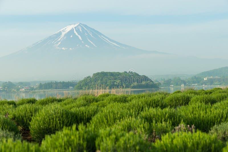 Zamyka up Mt Fuji w Japonia fotografia royalty free