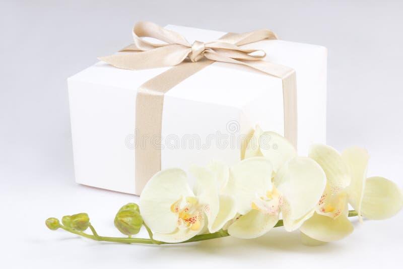 Zamyka up prezenta pudełko z faborkiem i orchidea nad bielem zdjęcie royalty free