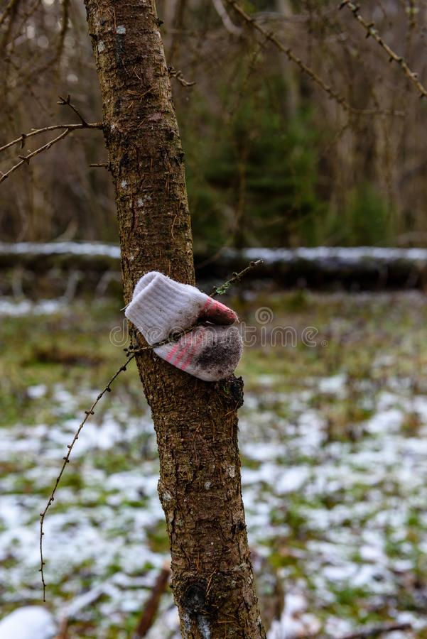 Zamyka up przegrana rękawiczka na kiju podczas opadu śniegu obrazy royalty free