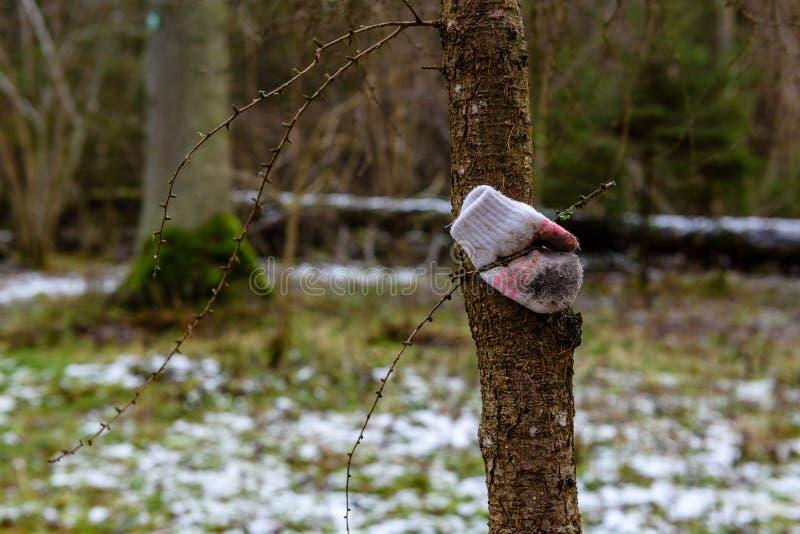 Zamyka up przegrana rękawiczka na kiju podczas opadu śniegu obraz stock