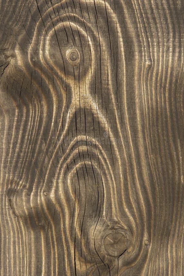 Zamyka up stara drewniana deska obraz royalty free