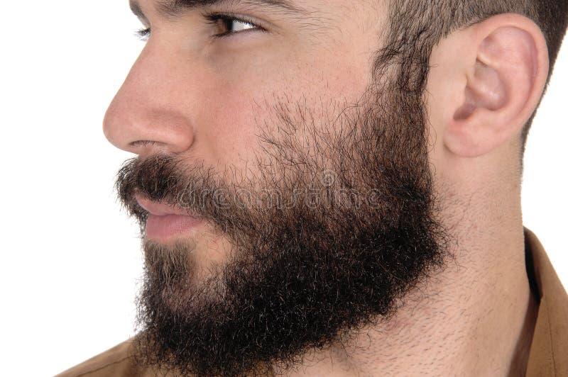 Zamyka up twarz mężczyzna z brodą i wąsy fotografia stock