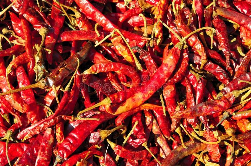 Zamyka up wysuszony chili obrazy stock