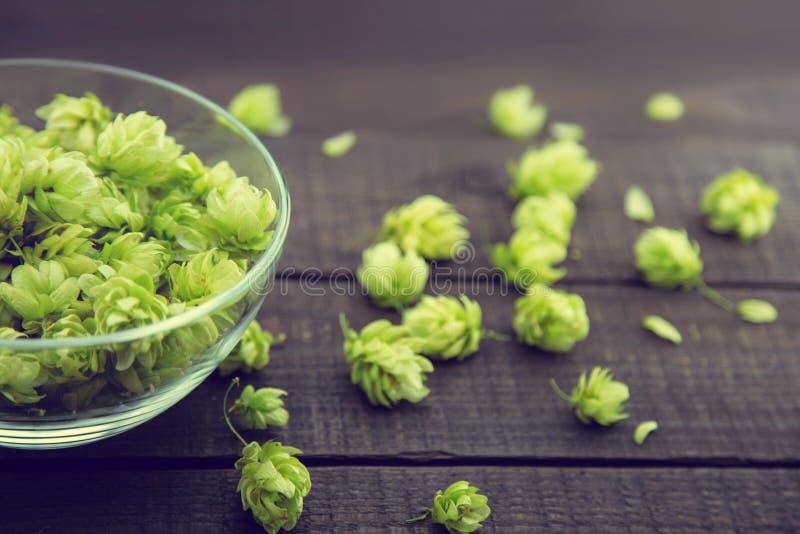 Zamyka up zieleni dojrzali chmiel rożki w szklanym pucharze nad ciemnym nieociosanym drewnianym tłem Piwny produkcja składnik obraz stock