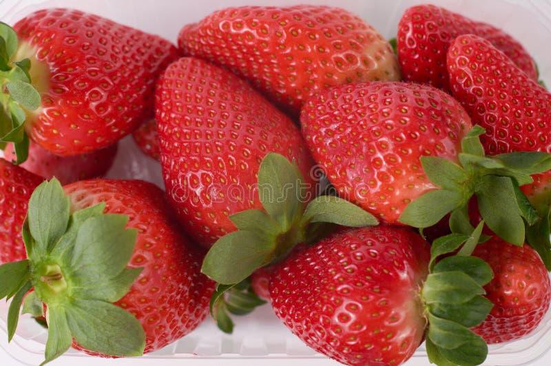 zamyka w górę obrazka świeże truskawki z białym tłem zdjęcia royalty free