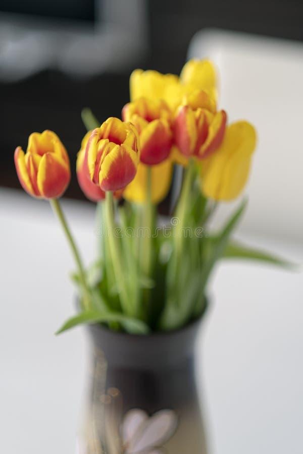 Zamyka w górę pięknych pomarańczowych tulipanów w wazie zdjęcie stock