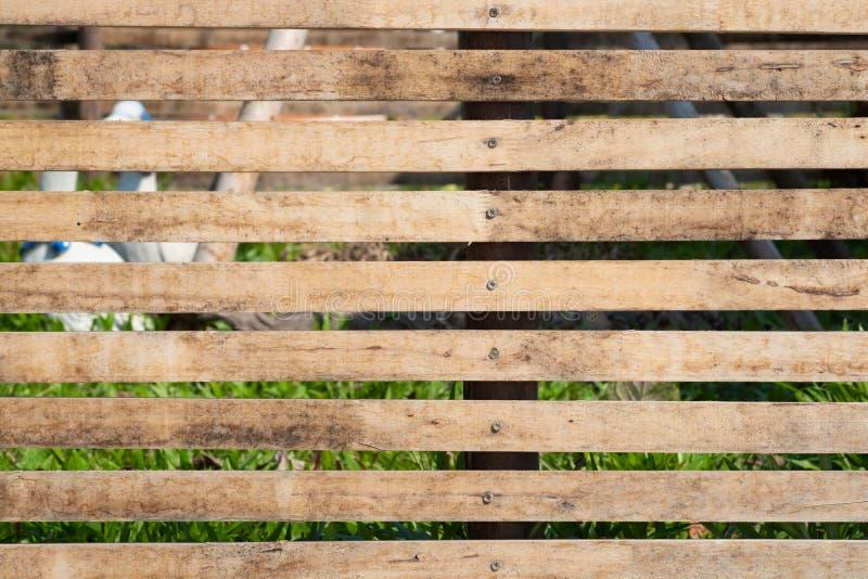 Zamyka w górę starego brązu drewnianego lath z naturalnym pasiastym tłem i teksturą zdjęcia royalty free