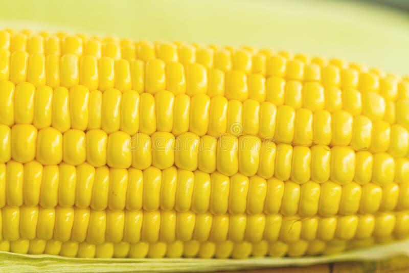 Zamyka w górę żółtej świeżej kukurudzy zdjęcie stock