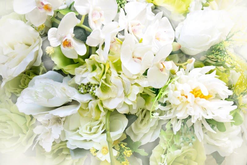 Zamyka w górę białego bukieta kwiatu - Abstrakcjonistyczny miękkiego światła styl obraz royalty free