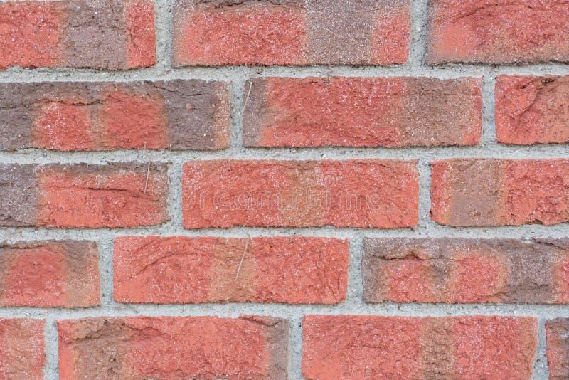Zamyka w górę czerwieni i siwieje ścianę z cegieł obrazy royalty free