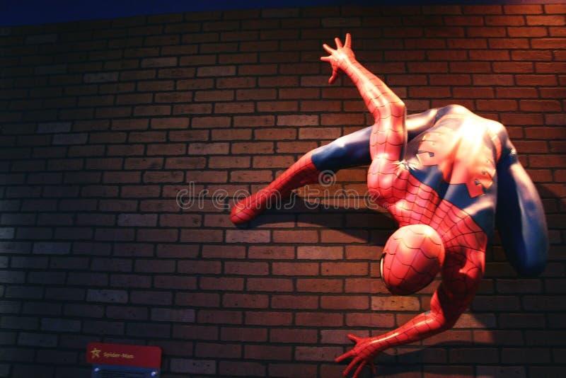 Zamyka w górę czlowiek-pająk, Madame Tussauds muzeum obrazy royalty free