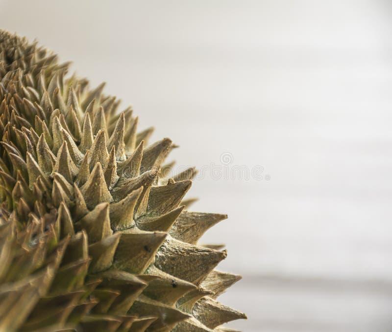 Zamyka w górę durian fotografia royalty free