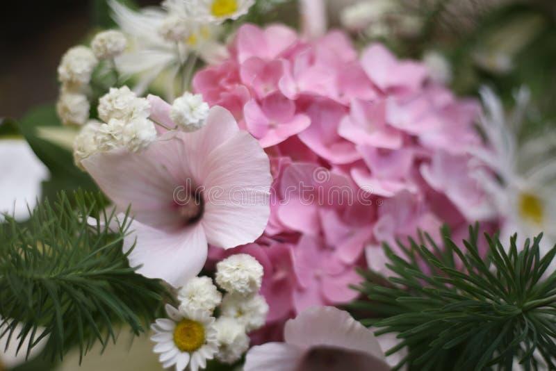 Zamyka w górę fotografii opanowany bukiet hortensja, chamomile i dasies, fotografia stock