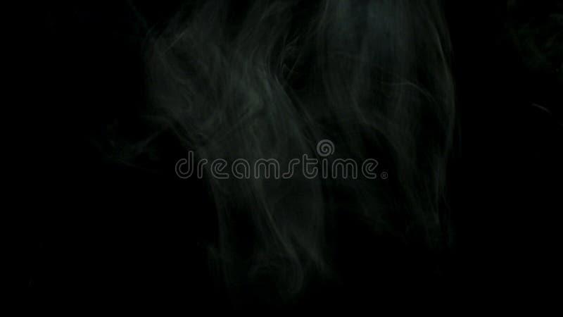 Zamyka w górę gęstego bielu dymu rozprzestrzenia nad czarnym tłem dla Akcyjny materia? filmowy Zwartej mgły latanie w zmroku zdjęcie stock