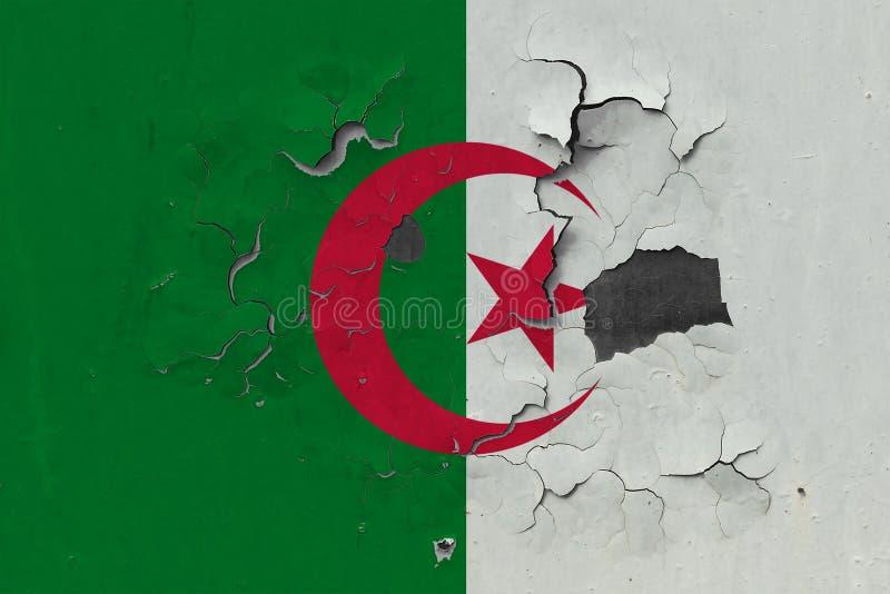 Zamyka w górę grungy, uszkadzającej i wietrzejącej Algieria flagi na ścianie struga daleko farbę widzieć wśrodku powierzchni, royalty ilustracja