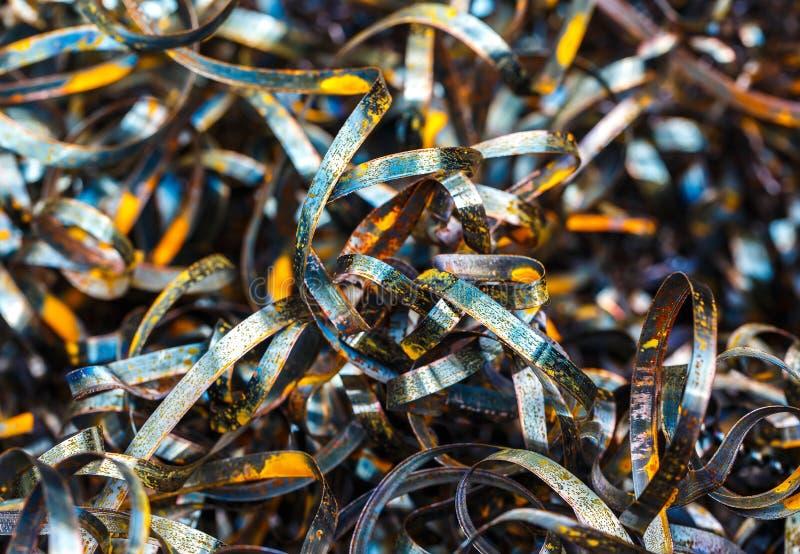 Zamyka w górę kręconych ślimakowatych stalowych metali goleń obrazy royalty free