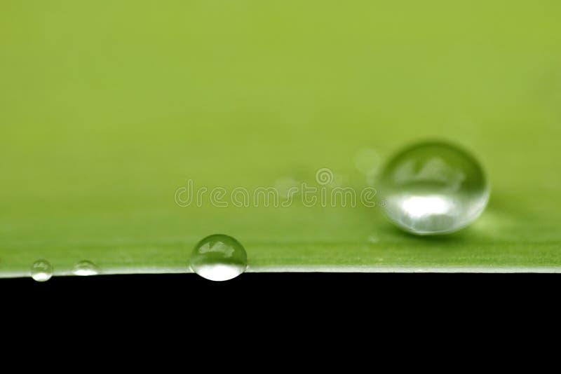 Zamyka w górę makro- strzał wody kropli obrazy royalty free
