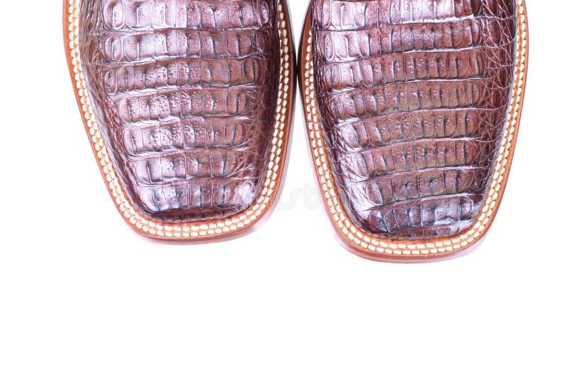 Zamyka w górę pary caiman rzemienni buty odizolowywający zdjęcie royalty free