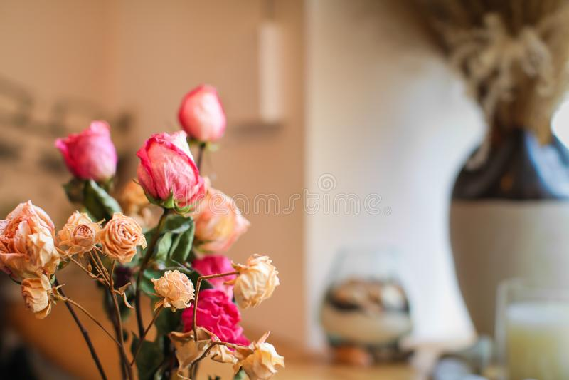 Zamyka w górę Pięknych małych herbacianych róż z więdnięciem, na lekkim tle zdjęcia stock