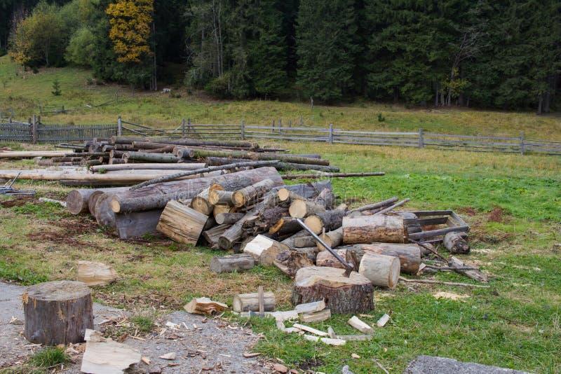 Zamyka w górę piture ciapanie łupka, kraj fotografii z drewnem i cioski, zdjęcie royalty free