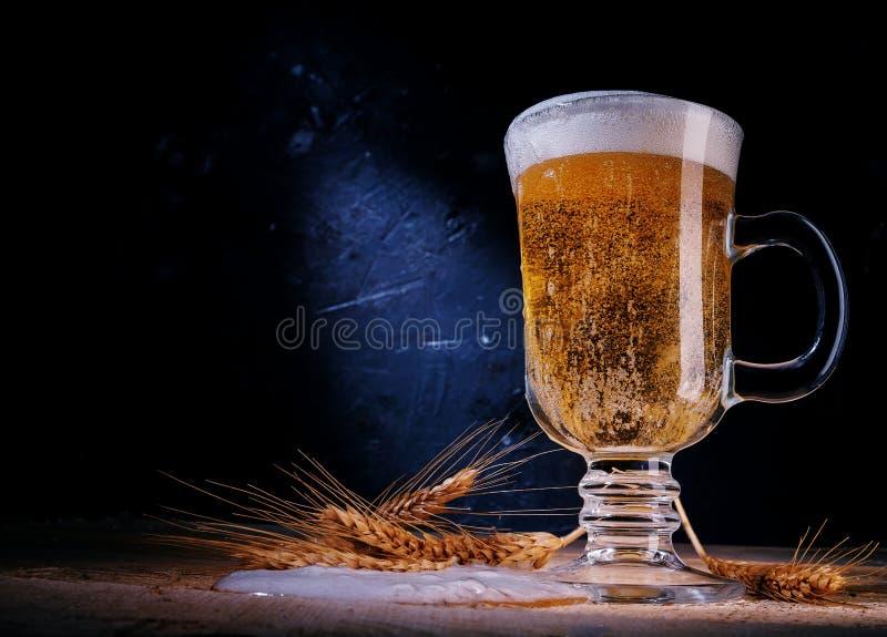 Zamyka w górę piwa w szkle z jęczmieniem dalej na ciemnym tle zdjęcie stock